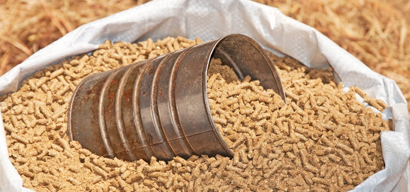 Ứng dụng của chất phụ gia bột đá trong sản xuất thức ăn gia súc